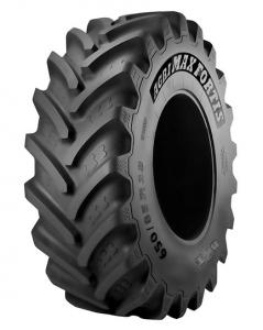 600/70R34 BKT AGRIMAX FORTIS 163A8/160D TL